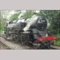 """7 1/4"""" gauge BR Standard 2 Tank / Ivatt Class 2"""